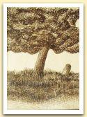 Miriam Bizioli, albero 2, china su carta.jpg