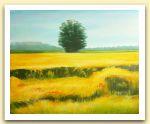 Clementina Macetti, Giugno dorato, olio su tela.jpg
